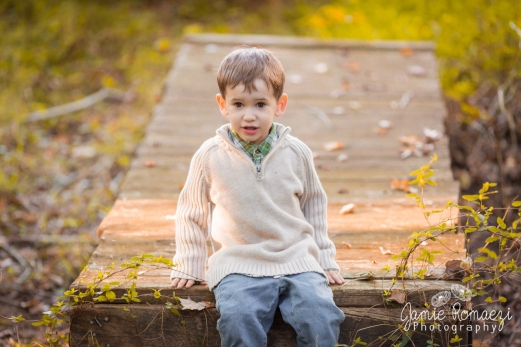 boy sitting on a small wooden bridge