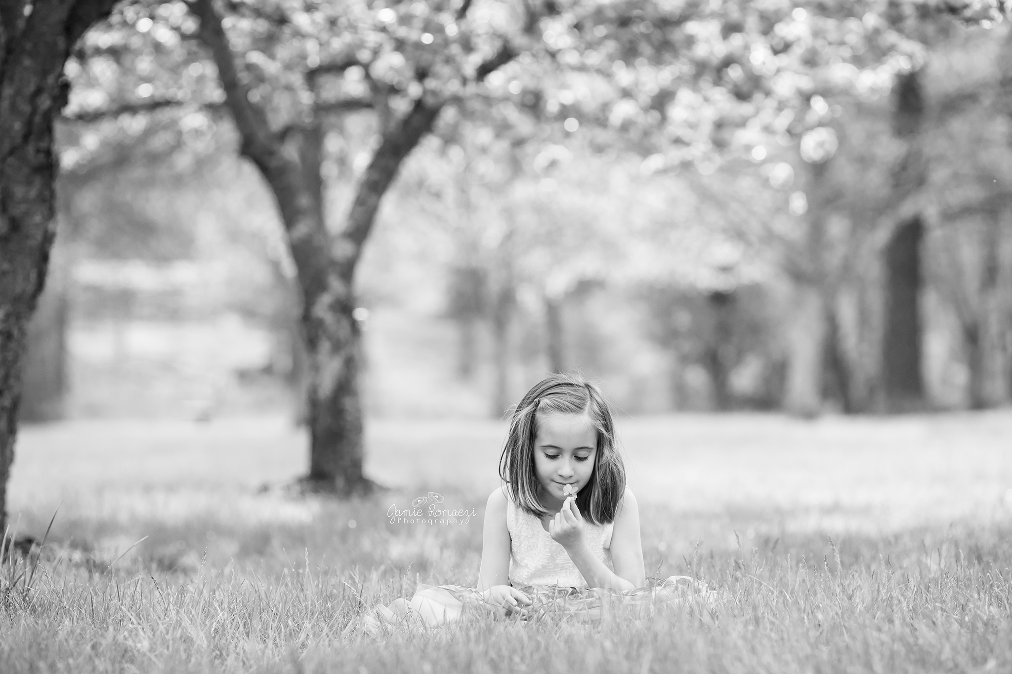 Black and white photos of little girl sitting in the in the grass with cherry blossoms in the background