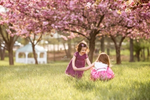Little girls playing in the grass with cherry blossoms in the background