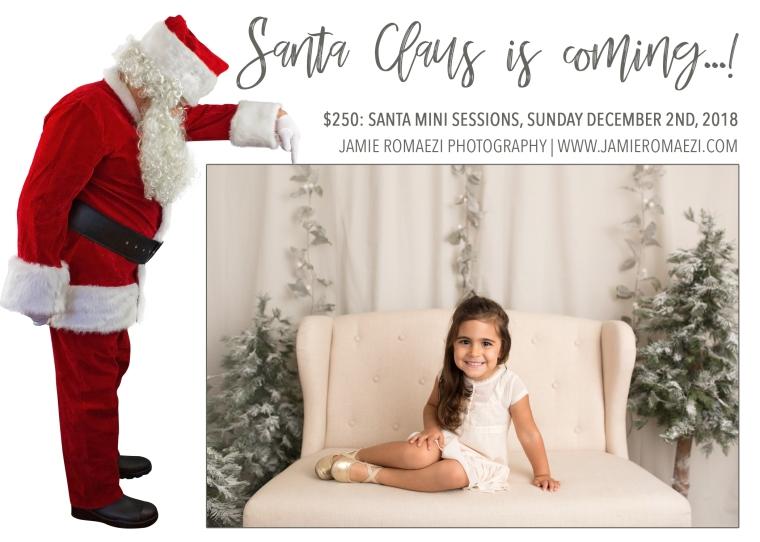 Jamie Romaezi Photography Santa Mini Session Flyer